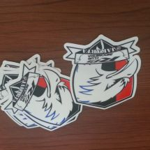 Dye Cut Sticker R15 20160223 152849